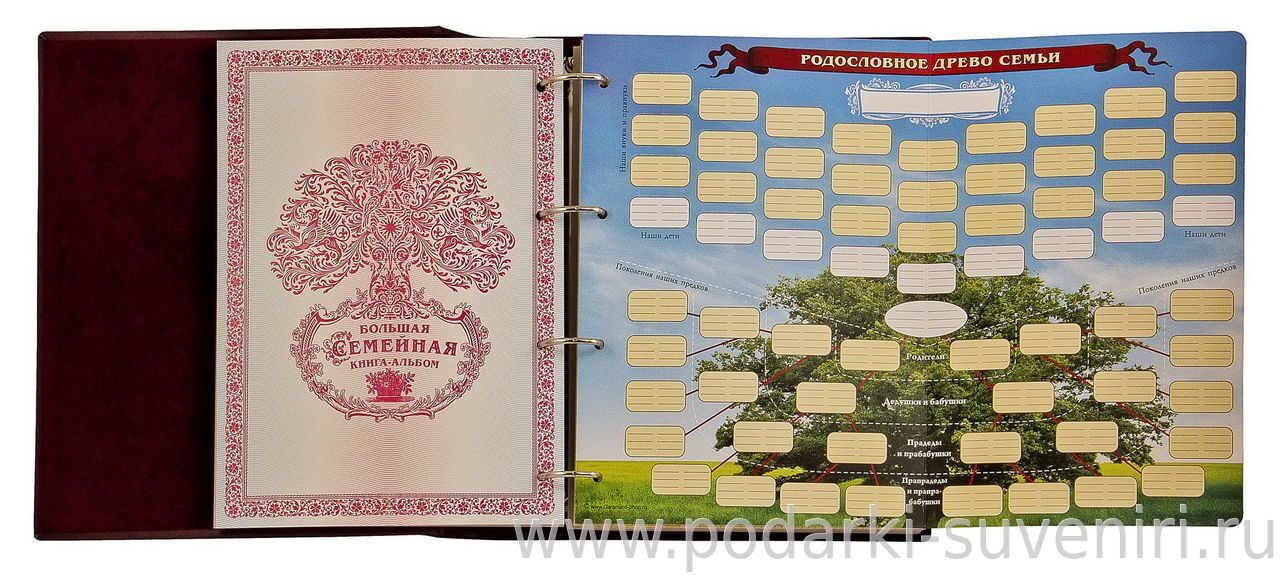 облегающее купить книгу для заполнения генеалогического дерева семьи действия